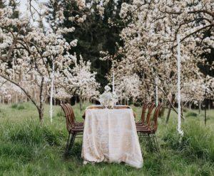 لیست تالارهای عروسی خرم آباد | لیست بهترین تالارهای عروسی خرم آباد