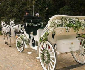 تالار عروسی در برغان   قیمت تالار عروسی در برغان   رزرو تالار برغان