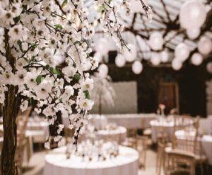 باغ تالار عروسی ارزان شیراز | باغ تالار عروسی اقساطی شیراز | باغ تشریفات ارزان شیراز