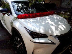 جدیدترین مدل گل آرایی گل کاری ماشین خودرو عروس در رشت و گیلان   گل آرایی و گل کاری ماشین عروس رشت در محل