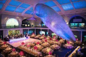 لیست ررزو آنلاین سالن های پذیرایی باغ تالارهای عروسی لوکس لاکچری جمیرا مارینا دیره بر دبی شارجه ابوظبی امارات